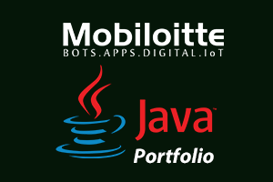 Portfolio for Java Application Development