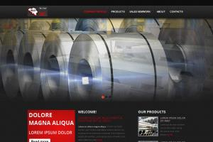 Portfolio for Design your basic 10 pages joomla site