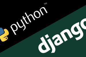 Portfolio for Python and Django Pixel Perfect Apps