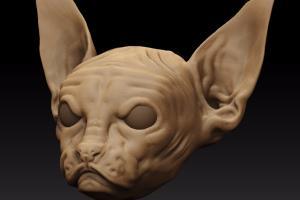 Portfolio for 7. Rendering 3D : Photorealism