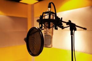 Portfolio for Voice Talent-Male