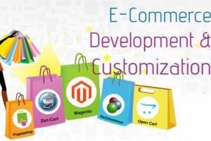 Portfolio for Ecommerce Website Admin and Development