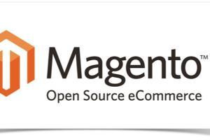 Portfolio for Magento Site Migration