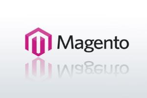 Portfolio for Web Developement & Services