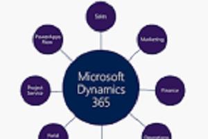 Portfolio for Microsoft dynamics 365 & CRM