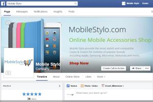 Facebook Page Development With E-Store
