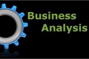 Portfolio for Business Analysis