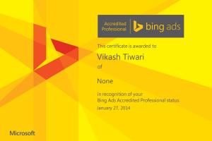 Portfolio for Bing Ads