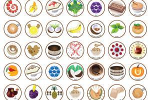 Portfolio for Design / Icons