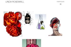 Portfolio for WordPress Website Design