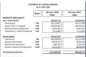 Portfolio for Preparation of Financial Statement
