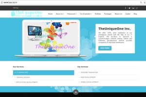Portfolio for Website and application development
