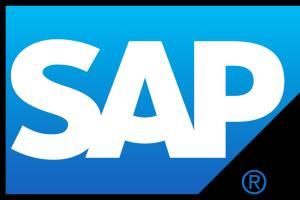 Portfolio for SAP ERP Implementatio, SAP Business One
