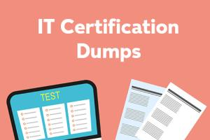 Portfolio for IT Certification Dumps and Articles