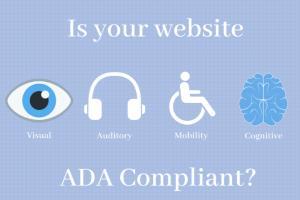Portfolio for We will do your Website ADA Compliance