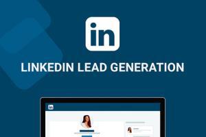 Portfolio for Certified B2B Lead Generation with Linke