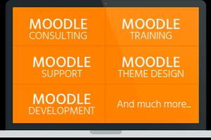 Portfolio for Moodle support and maintenance