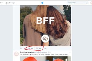 Portfolio for Twitter profile Manager