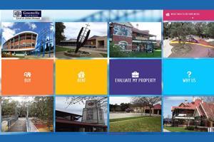 Portfolio for Real Estate Website with IDX