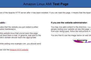 Portfolio for Linux Server Admin