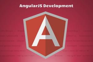 Portfolio for Angular JS Development