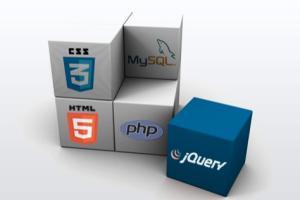 Portfolio for CMS and Web solutions