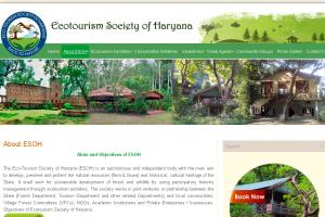Portfolio for CMS Website Design