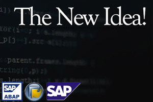 Portfolio for SAP R/3 ABAP - .Net/Java Connector
