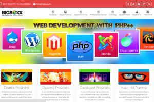 Portfolio for Magento & Wordpress Certified Developer