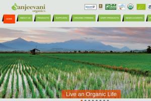 Portfolio for ON Page & Off Page web Optimisation SEO
