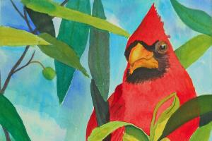 Portfolio for Illustration and Fine Art