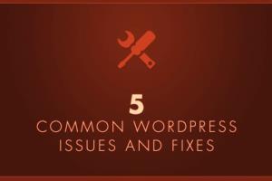 Portfolio for Fix any wordpress error, issues