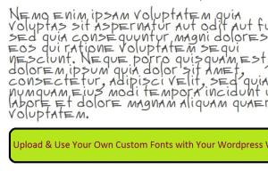 Portfolio for Add custom font to wordpress