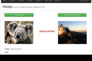 Portfolio for Riva Web