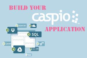 Portfolio for Caspio Application Development