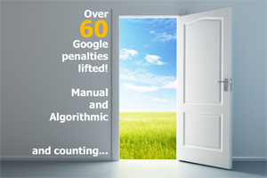 Portfolio for Google manual and algorithmic penalty