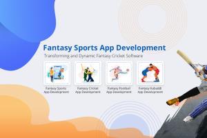Portfolio for Fantasy Cricket App Solution