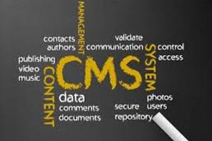 Portfolio for Content managment system