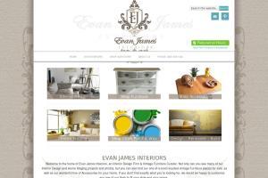 Portfolio for E-Commerce Web Design & Development