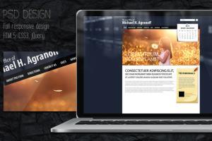 Portfolio for Web design, Wordpress, psd to html