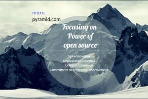 Portfolio for micropyramid.com