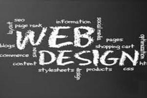 Portfolio for Website Development in PHP and Java