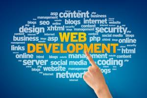 Portfolio for Web Designer / Web Developer