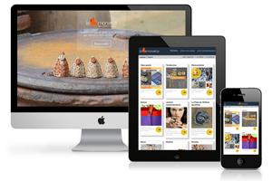 Portfolio for Custom Wordpress Web Design