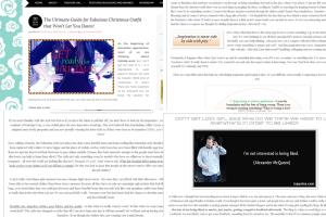 Portfolio for Professional article writer