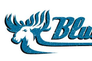 Portfolio for Illustrated Logo Design
