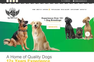Portfolio for Logo Designing | Website Development