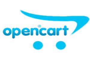 Portfolio for OpenCart Website Design & Development