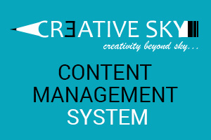 Portfolio for Content Management System(CMS)