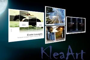 Portfolio for Creative graphic designer and painter